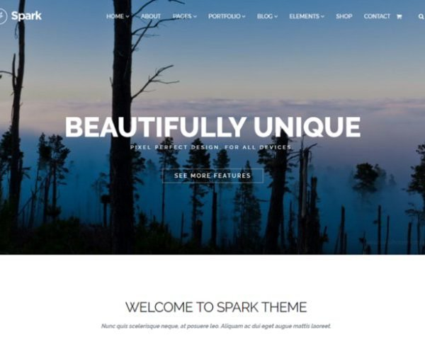 VisualModo Spark WordPress Theme