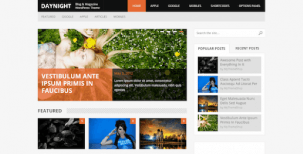 MyThemeShop DayNight WordPress Theme