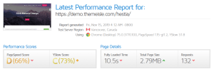 Hestia Pro GTmetrix Performance Report D (66%) C (73%)