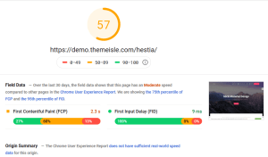 Hestia Pro Google PageSpeed Insights Desktop Test