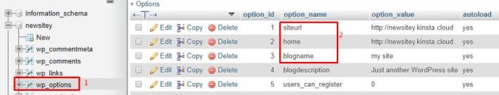 Change Site URL Home and Blog Name