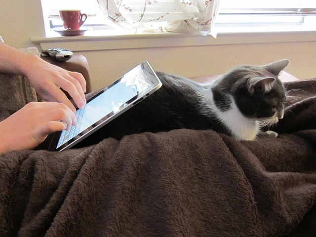 ipad-browsing