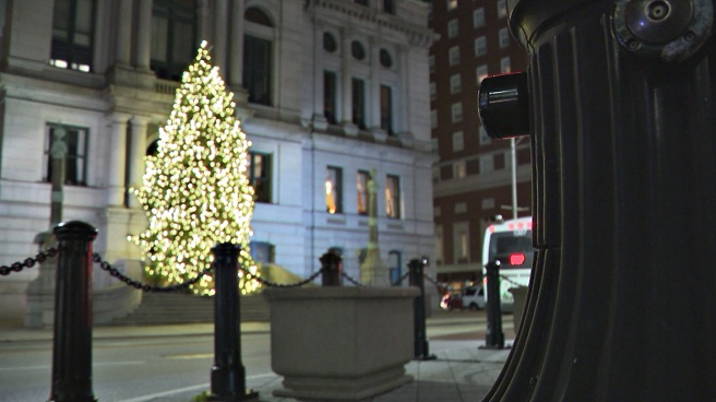 Providence Christmas Tree_393609