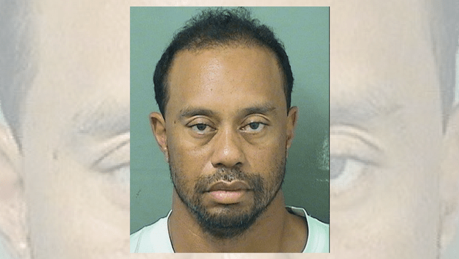 tiger woods mugshot_486846