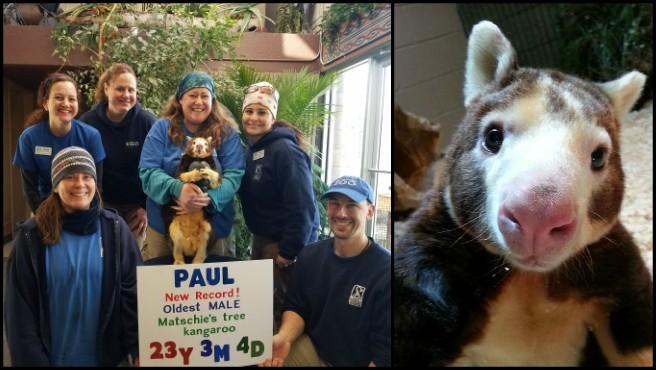 Paul_629159