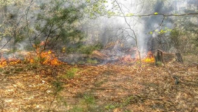 johnston-brush-fire_1520627308908.jpg