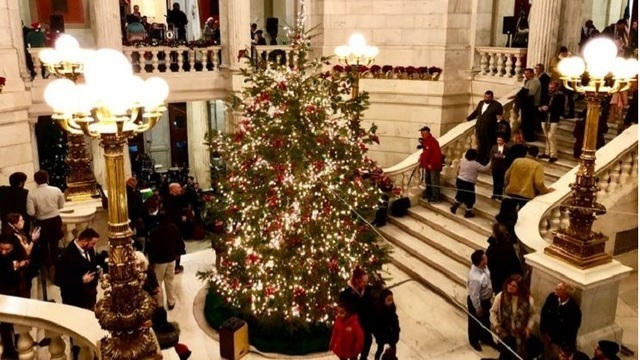 State House Christmas tree illuminated for holiday season