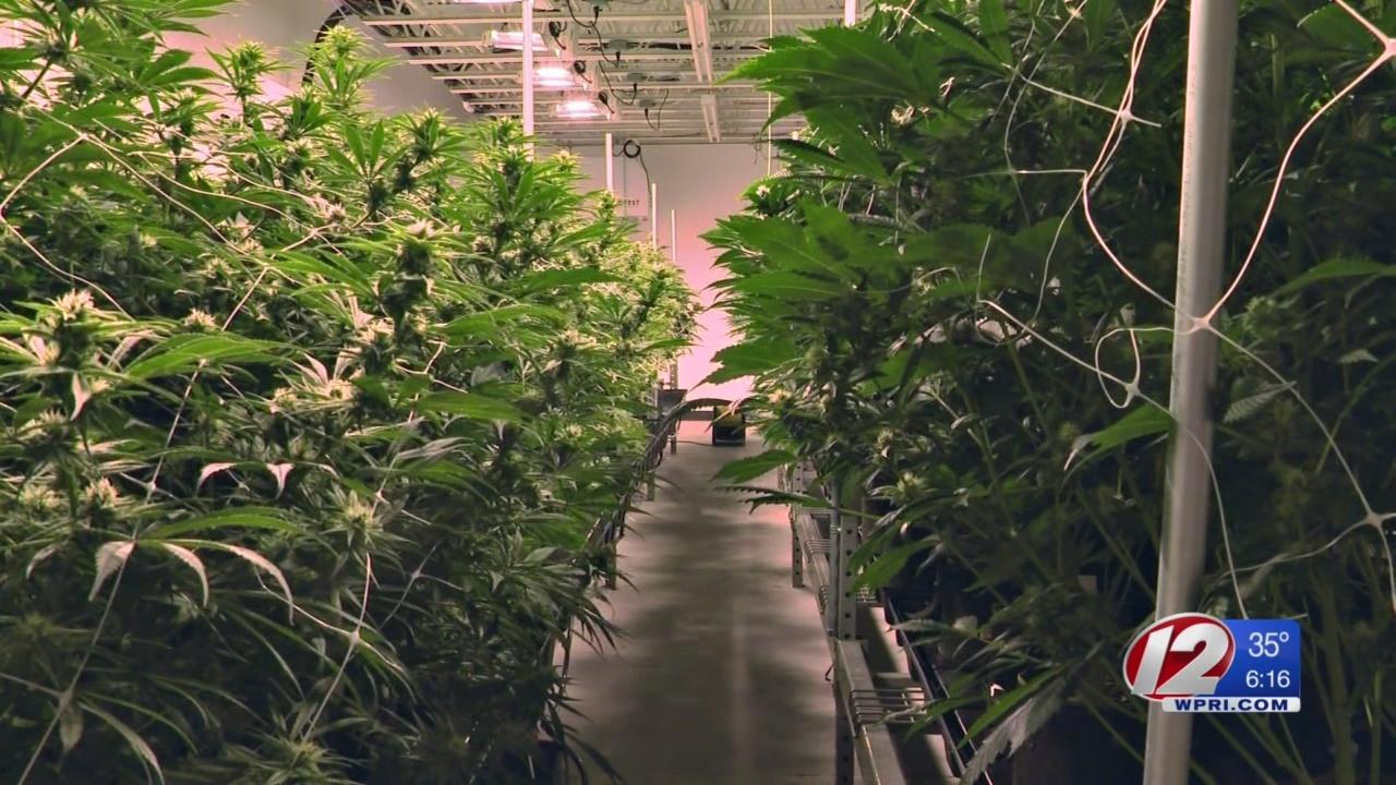 Richmond Residents Seek to Block Marijuana Grow from Moving In
