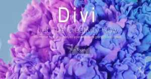 divi elegant themes premade layouts - WordPress Ecommerce: What to look out for?