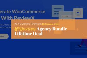 WPDeveloper Agency Developer Lifetime Bundle