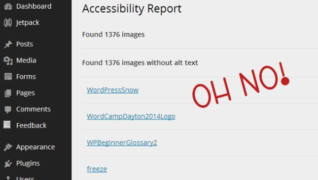 Sample Accessibility Report