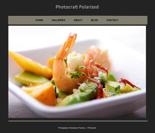 photocrati-polarized-wordpress-theme