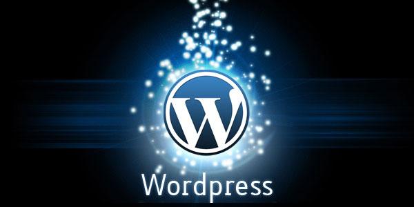 مطلوب للعمل مبرمج ورد بريس - WordPress Developer