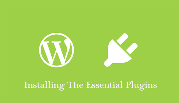 Installing The Essential Plugins