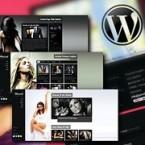 wp-themes