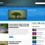calypso-wordpress-theme