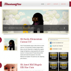 template-wordpress-titaniumifize-post