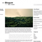 blogum-wordpress-theme-pre