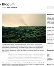 blogum-wordpress-theme-pre