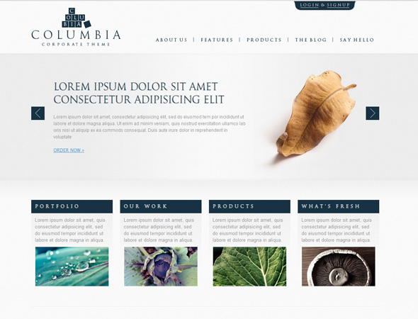 Columbia Corporate Theme with Showcase - WP