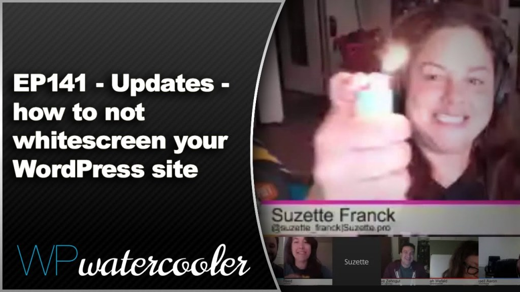 EP141 - Updates - how to not whitescreen your WordPress site 8