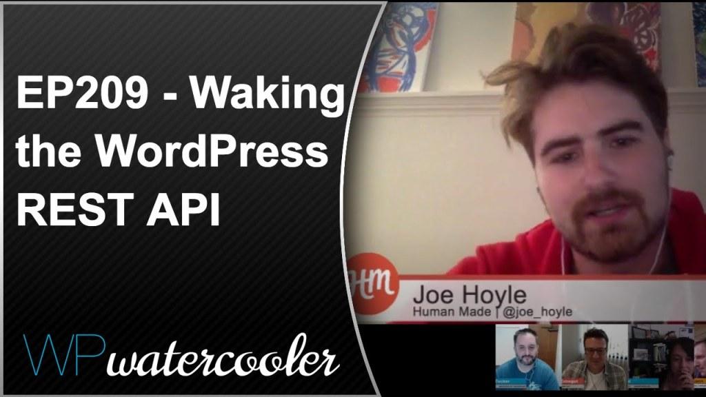 Ep209 - waking the wordpress rest api 8