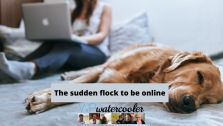 EP356 The sudden flock to be online