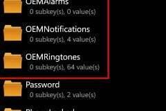 Registry Settings for Alerts