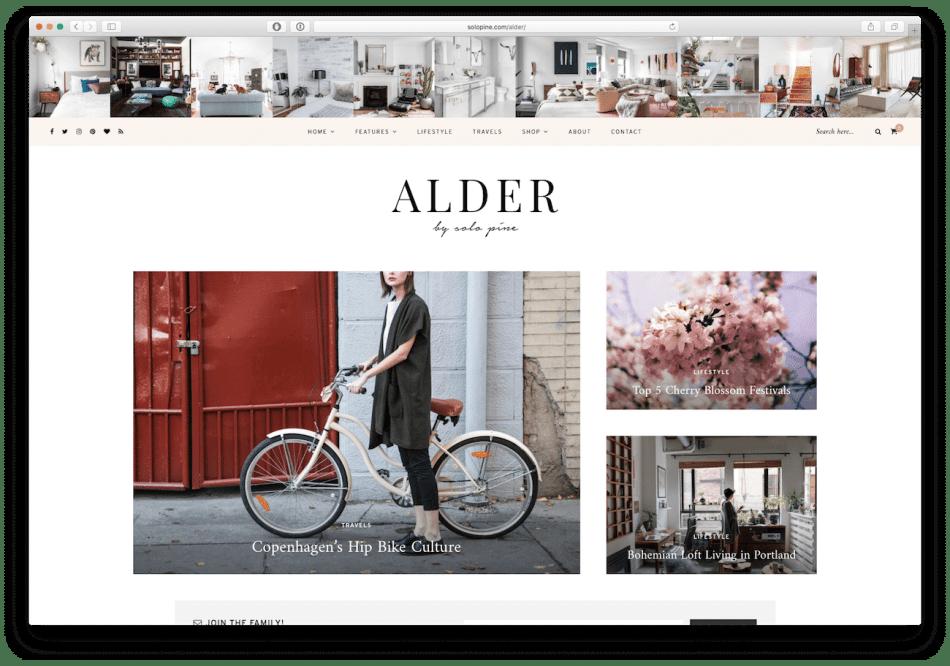 Screenshot of the Alder food blog WordPress theme