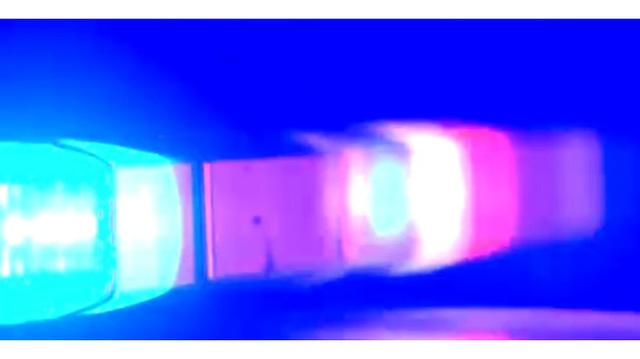 police-lights_29616087_ver1.0_640_360_1520609172629.jpg