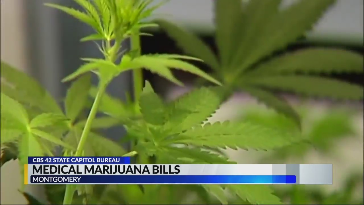 Lawmaker_talk_medical_marijuana_bills_0_20190326002912-842137438