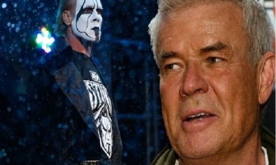 Eric Bischoff Says AEW Over Delivered With Sting Debut