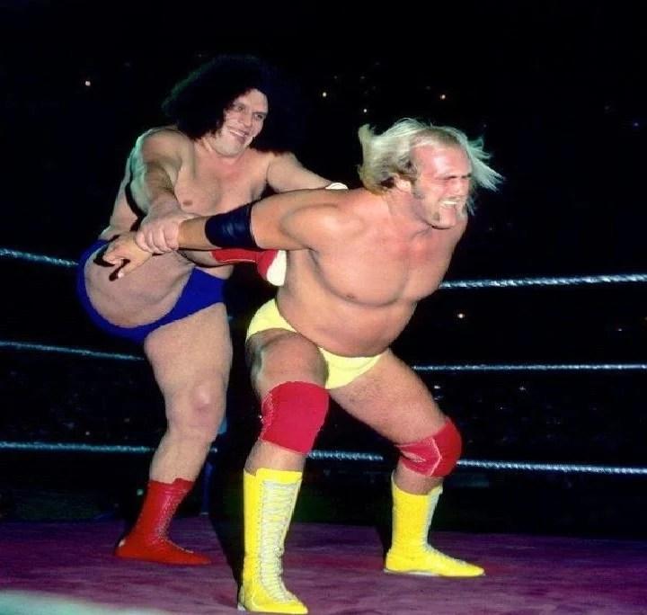 Hulk Hogan Andre the Giant