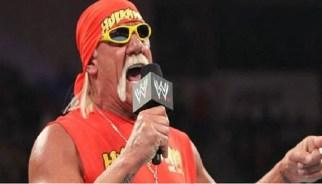WWE Diva 'Not happy' With Hulk Hogan