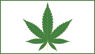Reed Weighs in on Marijuana Legalization Issue as Justice Department Pushes for Renewed Enforcement, Prosecution