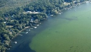 State Announces Grant Funding to Address Harmful Algal Blooms