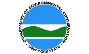 Cuomo Nominates Seggos as Next Leader of State Department of Environmental Conservation