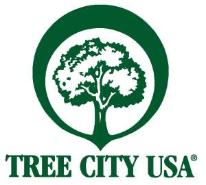 City Officials Plant Tree as Part of Arbor Day Celebration