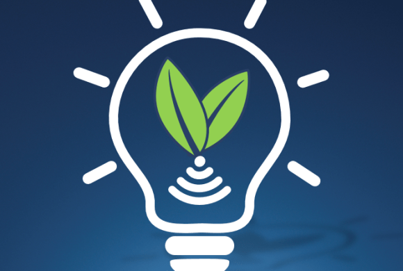 Resource Decoupling Through Sustainable Innovation in ICT