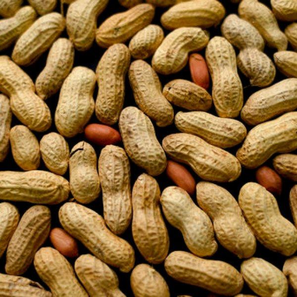 peanuts_570773