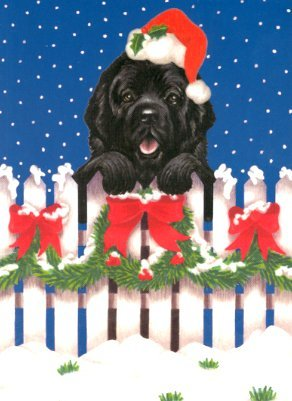 SALE 399 FENCE HOLIDAY CARDS