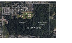 """Olympia City Council Considers an Option to Purchase """"Ashton Woods"""" portion of LBA Woods (July 16)"""