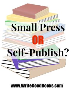 Should you self-publish or use a small press publisher? Which option makes the most financial sense?