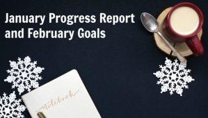 January Progress Report and February Goals