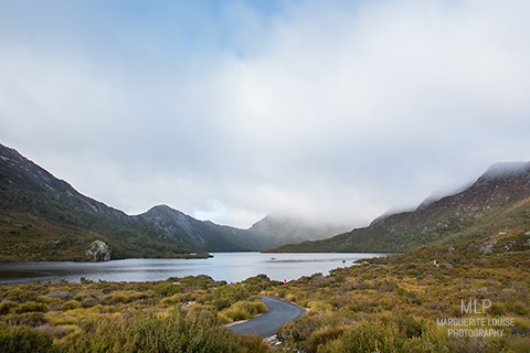 dove lake, cradle mountain, tasmania, australia