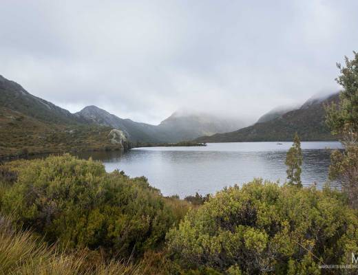 dove lake, lake, cradle mountain, tasmania