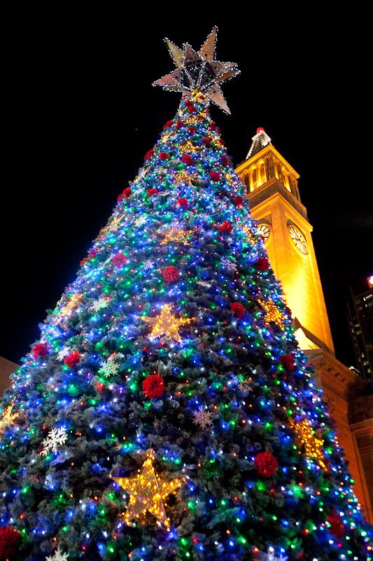 christmas tree, brisbane, city, king george square, city hall, christmas