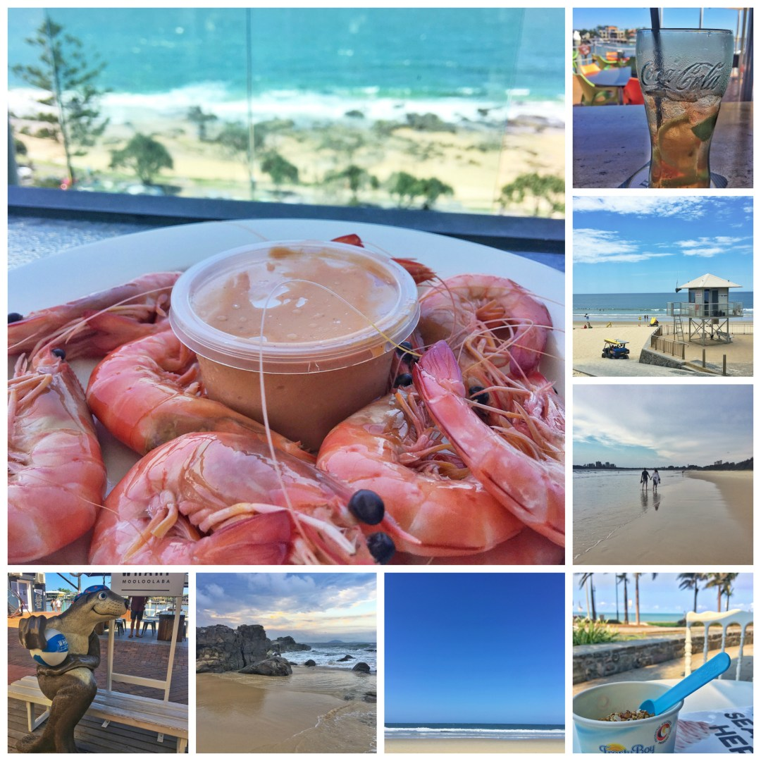 prawns, shrimps, mooloolaba, beach, wharf, cold drink, yoghurt, yogurt
