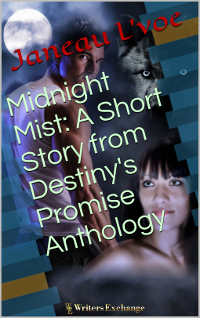 Destiny's Promise, Short Story, 4: Midnight Mist