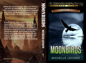 Moonbirds Print Cover